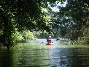 arroyo de Guadatín